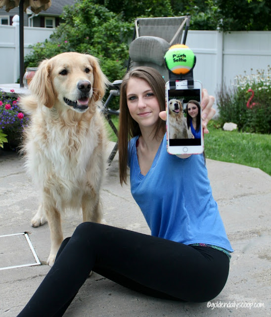 teenage girl taking selfie with golden retriever dog using the pooch selfie