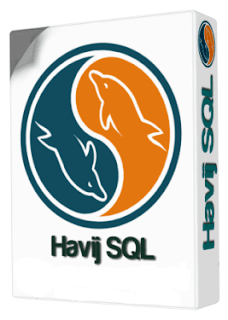 Free Download Havij 1.16 Pro Portable [CRACKED]