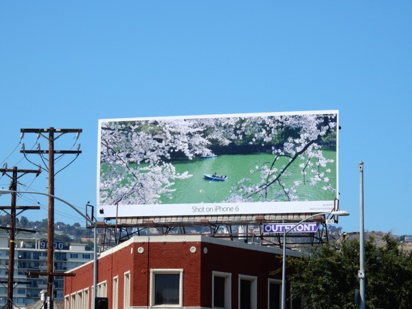 Apple Shot on iPhone 6 blossom billboard