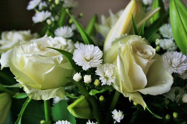 white-roses-images-hd