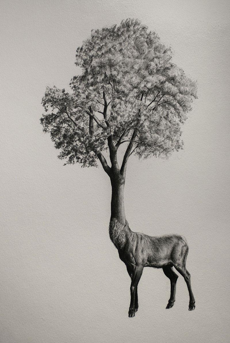 Mateo-Pizarro-02 Bestiary of Improbable Animals III: Drawings by Mateo Pizarro Design