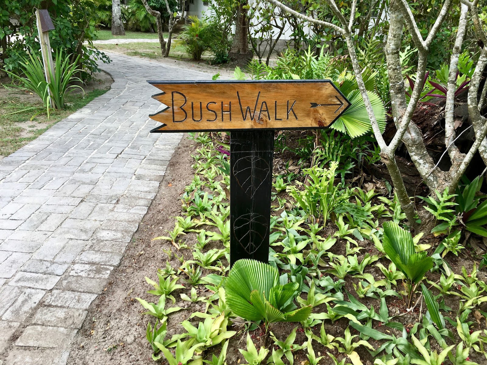 Castaway Island Resort Deals