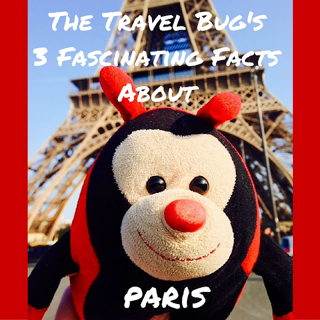 The Travel Bug: Paris