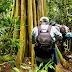 Tour trải nghiệm rừng Nam Cát Tiên 1 ngày