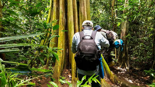 Trekking Tour Nam Cát Tiên