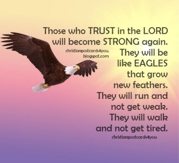 Be strong in the Lord, fly like eagle, trust, bible verse, free image.