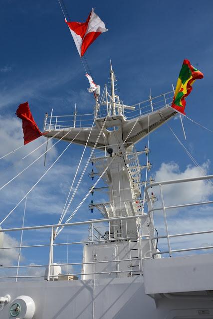 Ark Peace flags