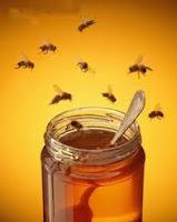 remedios-caseros-para-picaduras-de-abeja