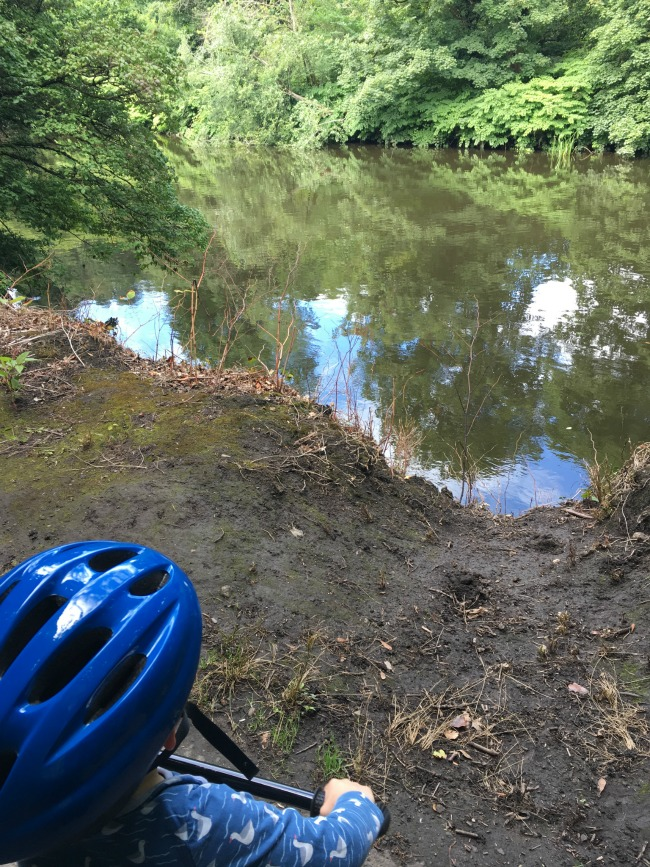 Our-weekly-journal-7-august-2017-trains-and-bikes-toddler-on-bike-looking-at-river