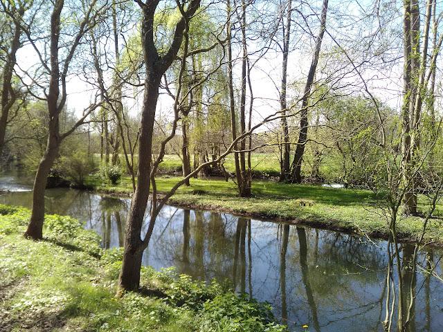 cours d'eau, rivière, ,méditation