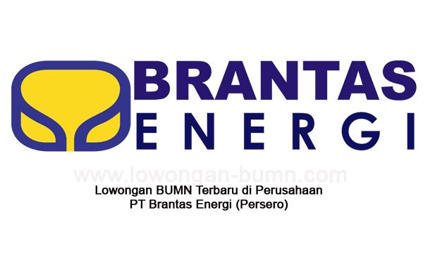 Lowongan BUMN Terbaru di Perusahaan PT Brantas Energi (Persero)
