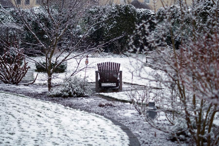 Blog + Fotografie by it's me! - Winter für einen Tag - verschneiter Garten