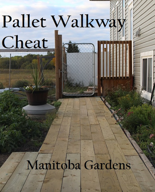 Pallet walkway Cheat