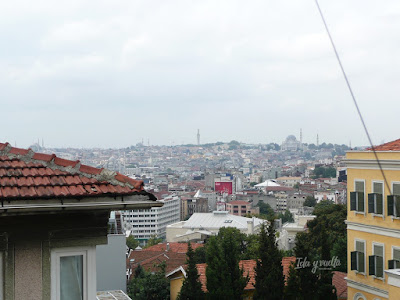 Habitación con vistas Witt Istanbul Suites