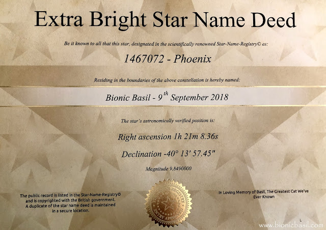 Bionic Basil's Extra Bright Star Deed September 2018