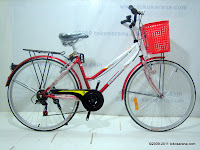 1 City Bike EVERGREEN PISA 6 Speed 26 Inci