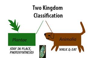 sistem klasifikasi 2 kingdom