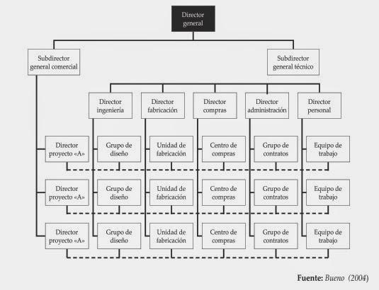 Modelo Organizacional Por Clientes Y Matricial
