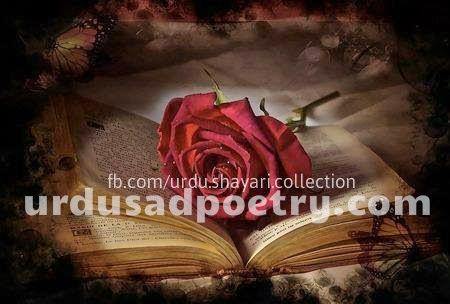 Ya Rab Gham-E-Hijraan Me Itna To Kia Hota - Urdu Sad Poetry