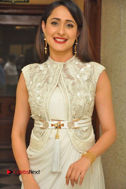 Actress Pragya Jaiswal Stills in Beautiful White Dress at turodu Audio Launch  0001.JPG