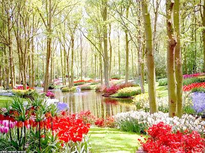 Nikmati Hari Yang Indah di Taman Bunga