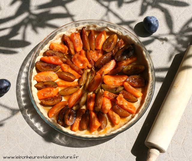 tarte prunes abricots vegan végétale