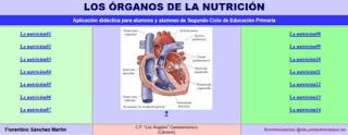 http://cplosangeles.juntaextremadura.net/web/cmedio3/nutricion/indice.htm