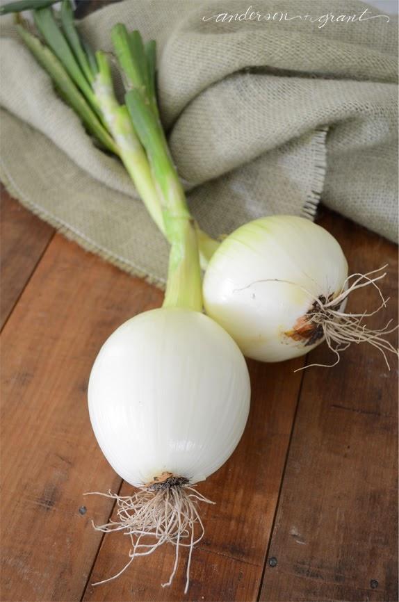 Fresh garden onions | www.andersonandgrant.com