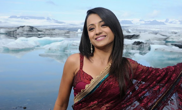 trisha in transparent saree photo gallery