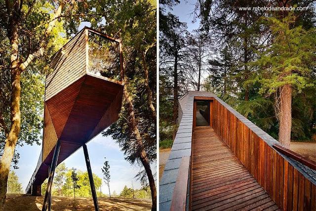 Estructura habitable de madera alargada entre los árboles en Portugal