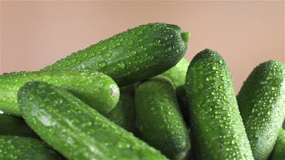 Cucumber Healthy summer foods you should add to your daily diet