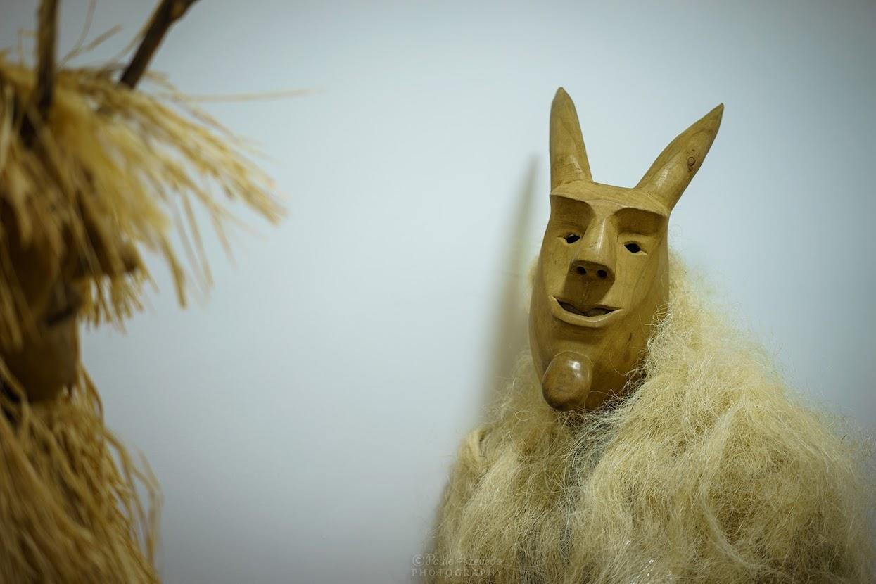 Careto de Lazarim no Centro Interpretativo da Máscara Ibérica
