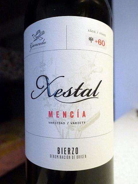 Gancedo Xestal Mencía 2010 (90 pts)