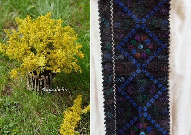 cana vaza cu sanziene galbene si broderie model de cusut ie negru padureni Transilvania
