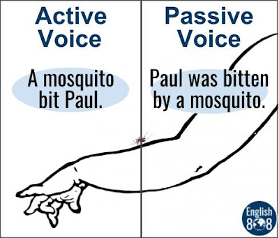 active voice VS passive voice bitten by a mosquito