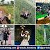 Bandung Kota Selfie