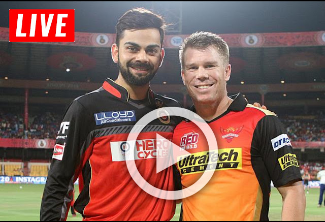 SRH vs RCB IPL 2019 match number 11