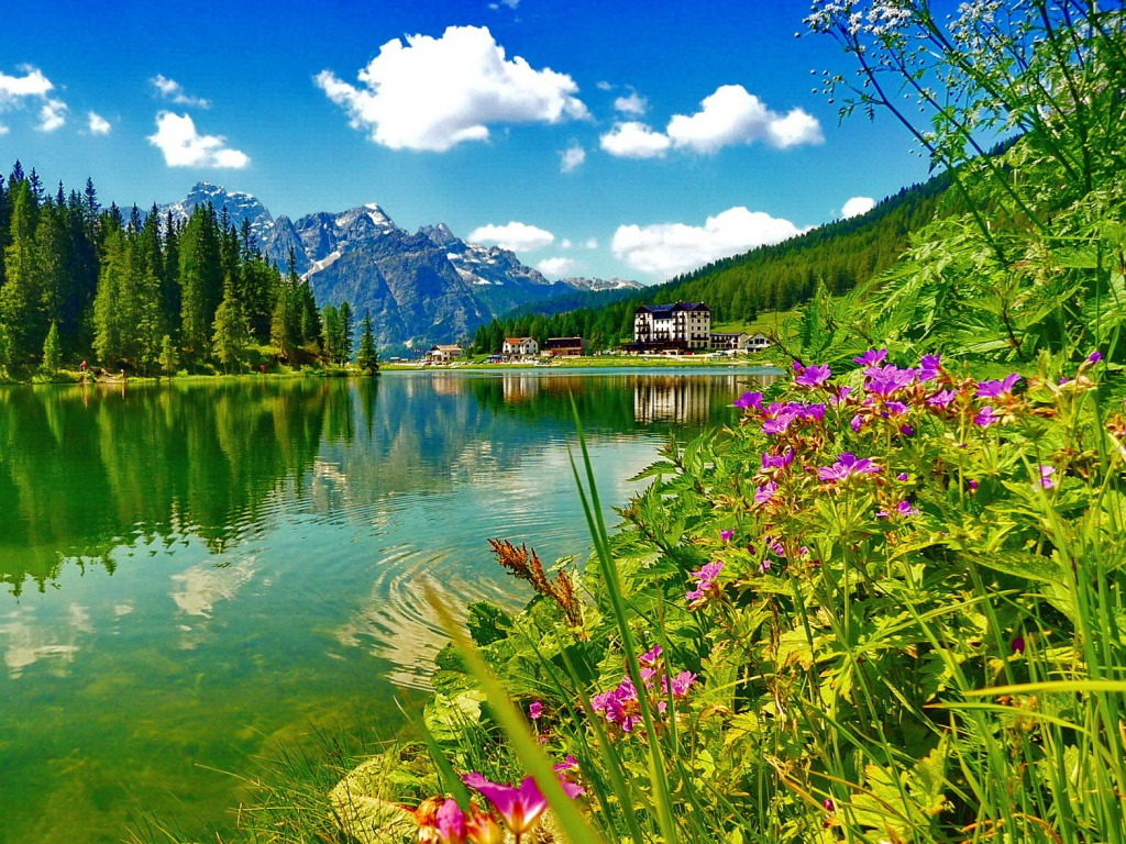 Wallpapers Fair: Beauty Mountain And Forest Lake And River Desktop Background Wallpapers