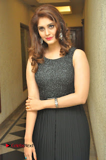 Actress Surabhi Stills in Black Long Dress at turodu Audio Launch  0007.JPG