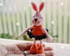 http://fairyfinfin.blogspot.com/2015/02/crochet-rabbit-doll-amigurumi-chochet.html