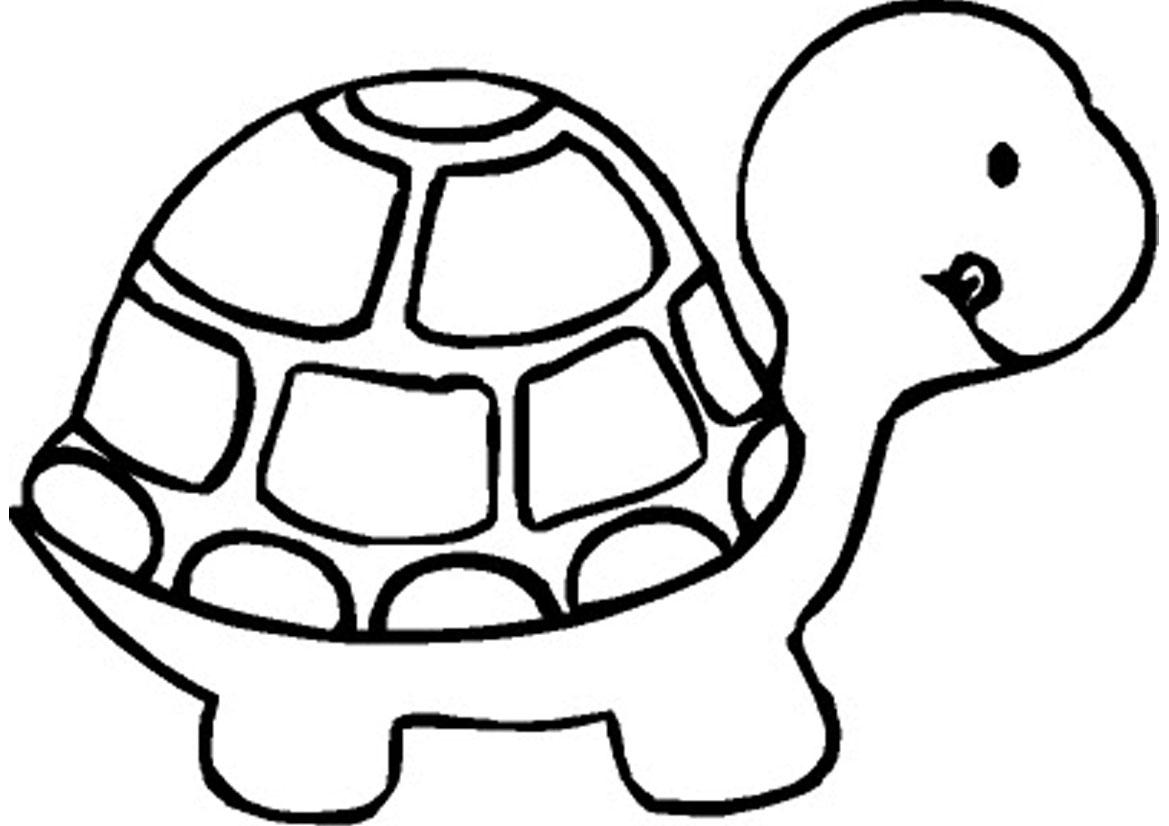 Gambar Animasi Kura Kura Kantor Meme
