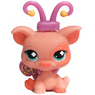 Littlest Pet Shop Multi Pack Pig (#622) Pet