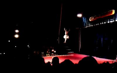 """Cartão de visitas: um quadro da apresentação do """"acrobata voador"""" do Circo dos Sonhos"""