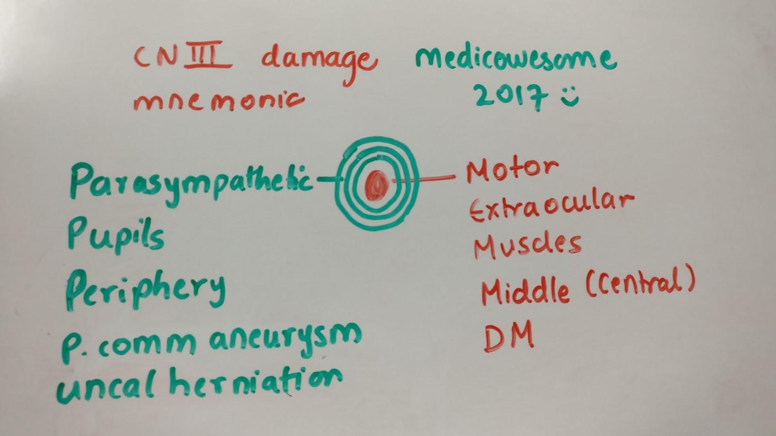 Medicowesome: Cranial nerve III damage (Oculomotor nerve damage ...