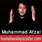 http://www.humaliwalayazadar.com/2016/10/muhammad-afzal-nohay-2017.html