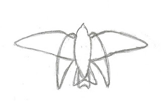 Figure 30: Outline of Tree Swallow flapping and partially closed glide.