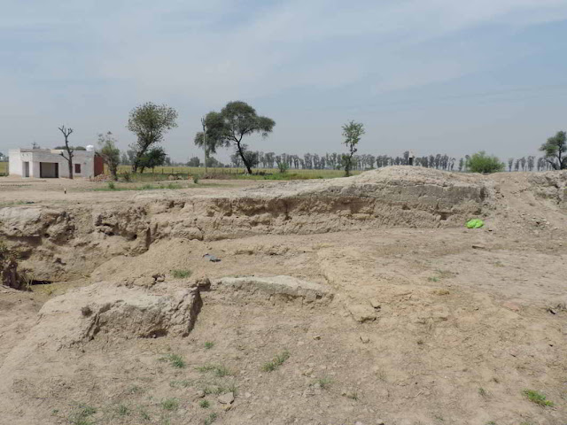 Excavations start at 5,000-year-old Pre-Harappan site in Haryana