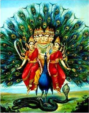Madhavi 3d Name Wallpapers Hd Wallpapers Hdwallpapers Org In Lord Murugan Hd
