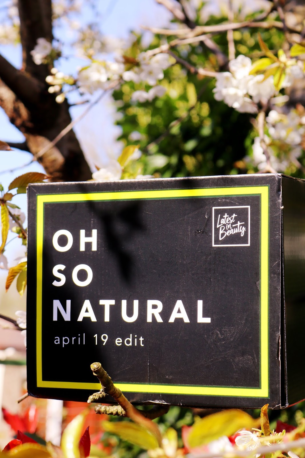 Latest In Beauty Oh So Natural Box