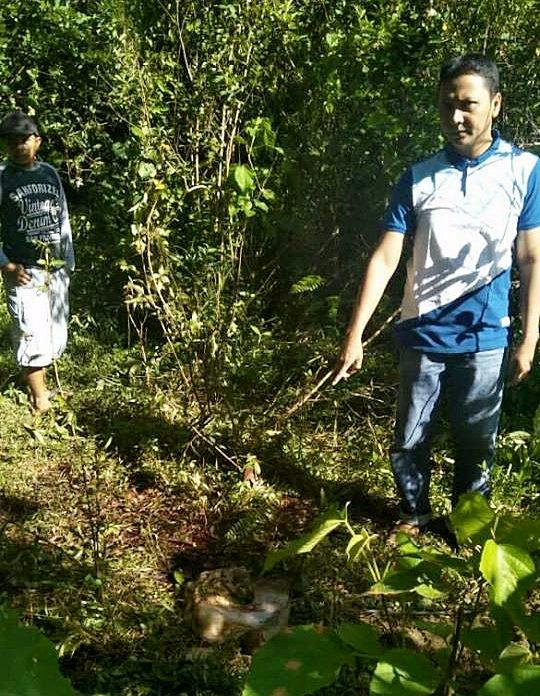 Pencurian Ternak Sembelih di Tempat Beraksi di Kapalo Hilalang